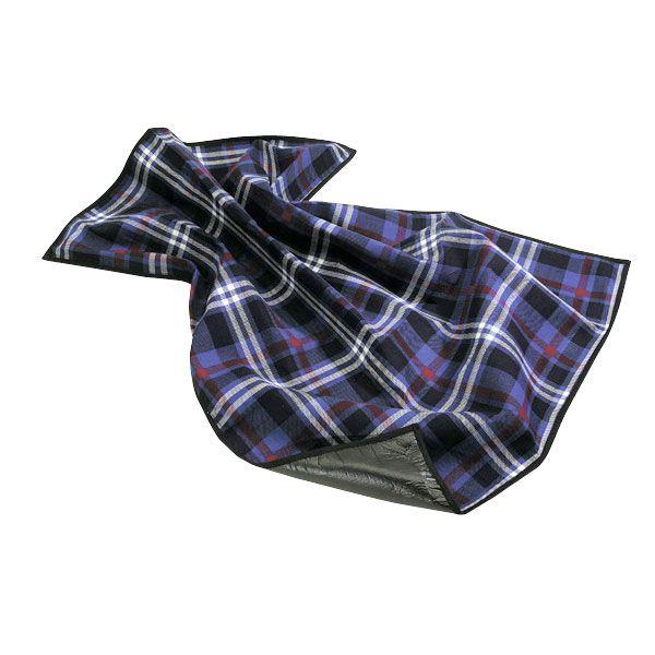 Blaukarierte Picknickdicke mit wasserabweisender Unterseite